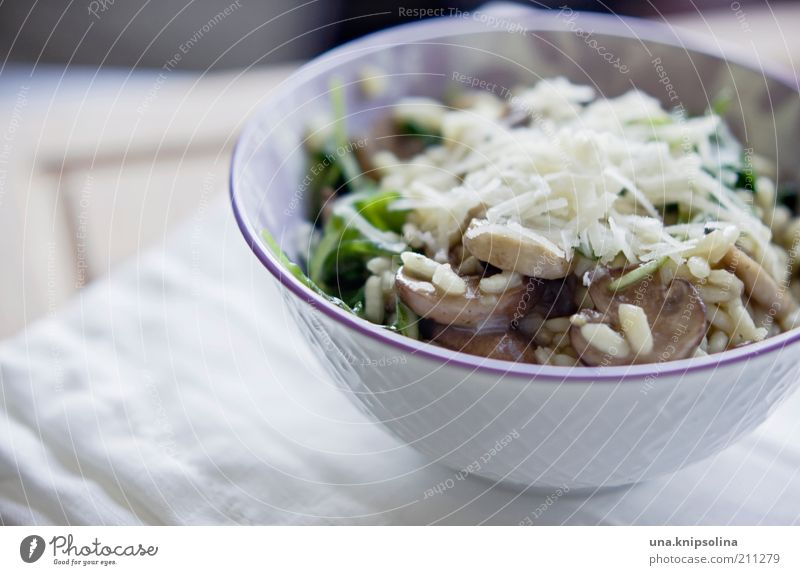 pilzrisotto weiß Lebensmittel frisch Ernährung Kochen & Garen & Backen Getreide Gemüse Appetit & Hunger lecker Geschirr Bioprodukte Abendessen Pilz Schalen & Schüsseln Mittagessen Käse