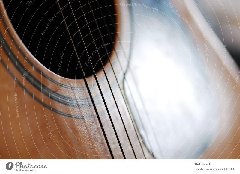 Universally Speaking Gefühle Spielen Musik Stimmung Lifestyle Freizeit & Hobby Lebensfreude Gitarre Saite Inspiration Freude Zupfinstrumente