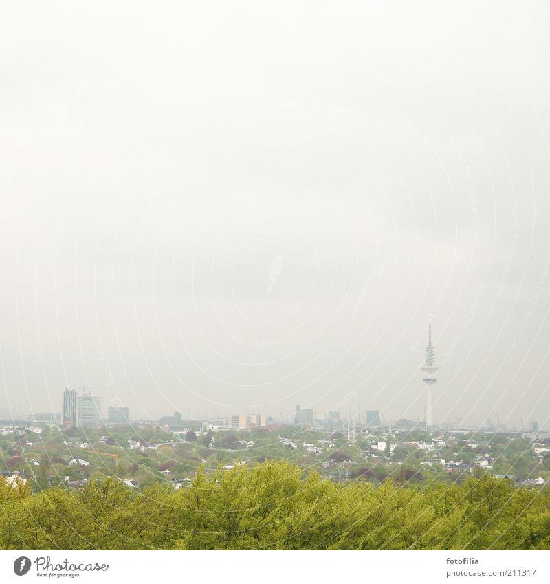 grau-grünes Hamburg Stadt grün Baum Landschaft grau Park Nebel Hochhaus Sträucher groß hoch Turm Hamburg entdecken Skyline Hauptstadt