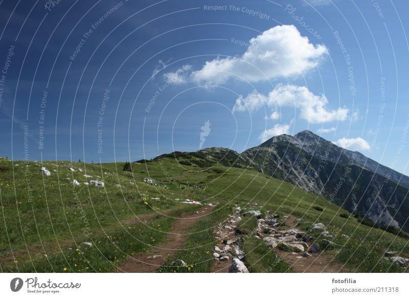 Auf geht`s! Himmel Natur grün blau Pflanze Sommer Freude Wolken Ferne Berge u. Gebirge Landschaft Umwelt Gras Bewegung Kraft hoch