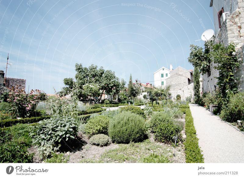 I never promised you a rose garden - ein lizenzfreies Stock Foto von ...