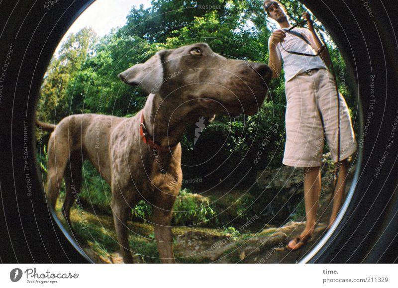 Ende Gelände - Leinenpflicht :( Mensch Mann Natur Sommer Tier Wald Hund Wärme Freundschaft Erwachsene maskulin Nase Perspektive Spaziergang Ohr