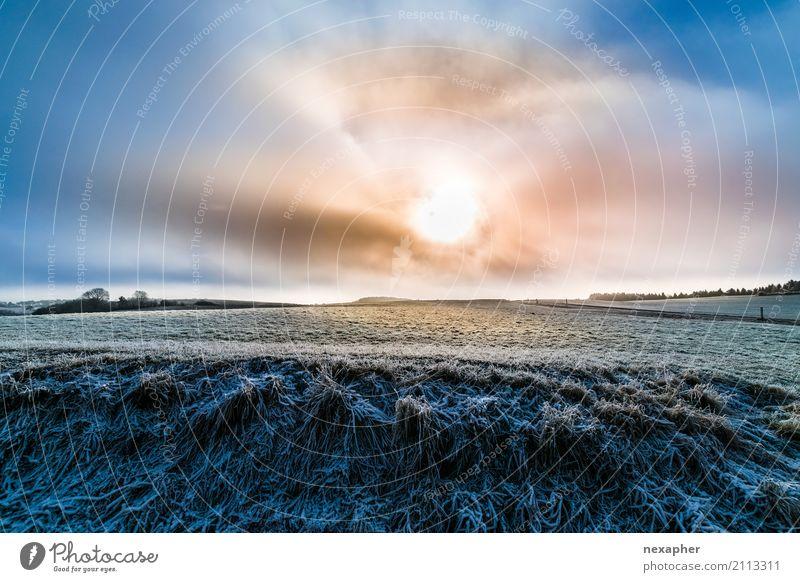 Wolken-Sonne mit Winterlandschaft Himmel Natur blau grün weiß Erholung Ferne Umwelt kalt Lifestyle Gras Freiheit Tourismus