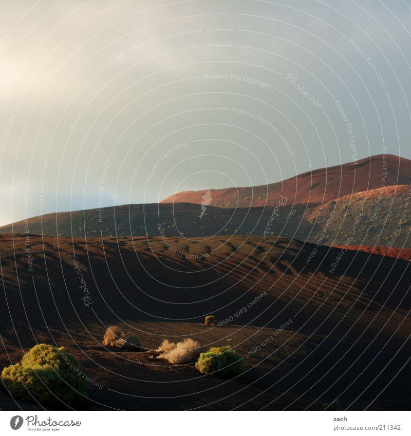 Feuerberge schön rot Ferien & Urlaub & Reisen Ferne dunkel Berge u. Gebirge Sand Landschaft braun Insel Sträucher Hügel Vulkan Kanaren Lanzarote Wolkenhimmel