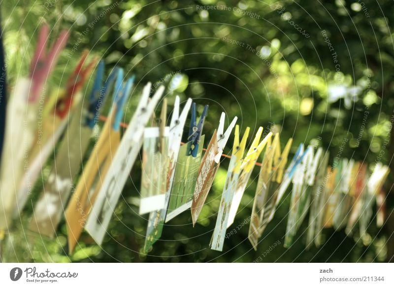 Karten grün Feste & Feiern Garten Design Ordnung Kreativität Fotografie Postkarte Reihe hängen Sammlung Wäscheleine Schreibwaren Ausstellung aufhängen Kultur