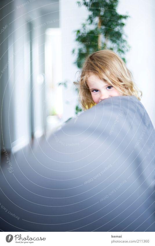 Schüchtern Mensch Kind Mädchen Freude Auge Kopf Haare & Frisuren hell Kindheit blond Wohnung Nase niedlich beobachten Lächeln Sofa
