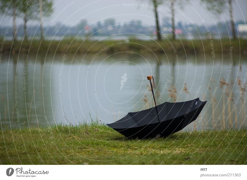 Natur Wasser Baum Wolken Gefühle Gras See Landschaft Stimmung Horizont Erde Insel Klima Unwetter schlechtes Wetter Gewitterwolken