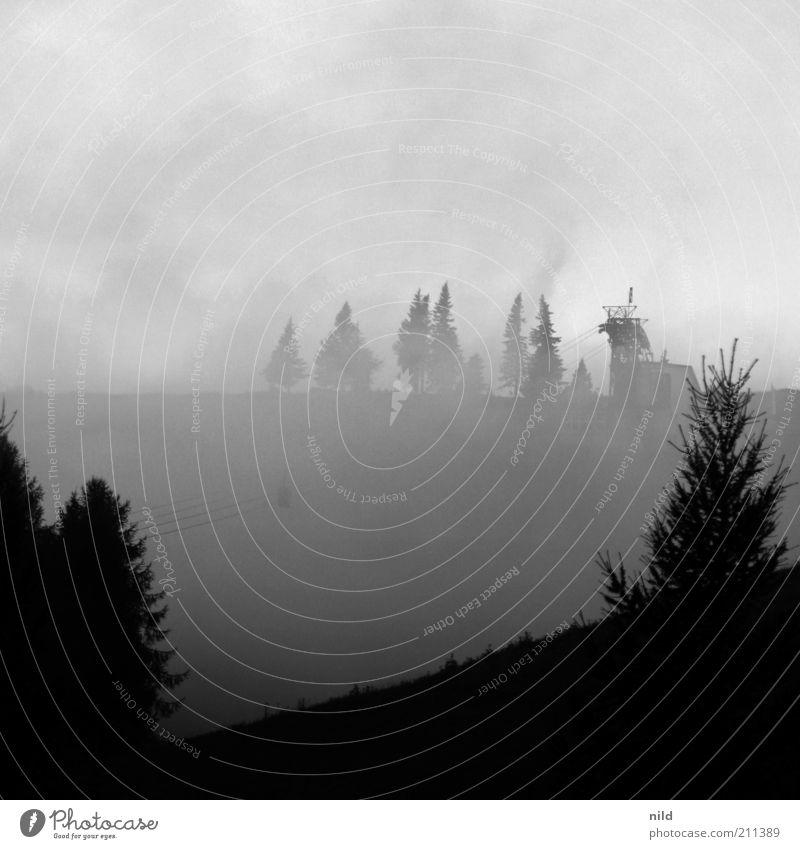 Letzte Bergfahrt 16:00 Uhr Natur Baum Wolken dunkel oben Berge u. Gebirge grau Landschaft Nebel Wind Wetter Umwelt bedrohlich Alpen Dunst Schwarzweißfoto