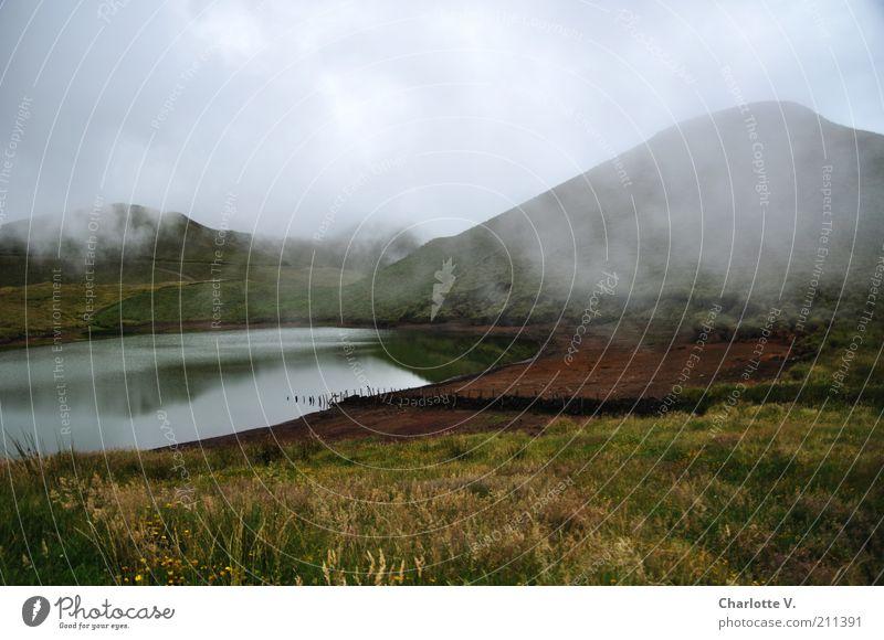 Nebel-See Berge u. Gebirge Hochebene Natur Landschaft Wasser Herbst schlechtes Wetter Hügel Gras ruhig geheimnisvoll bezaubernd Einsamkeit Unbewohnt unheimlich