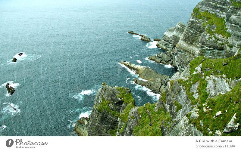Emerald Isle Natur Wasser grün blau schön Pflanze Sommer Ferien & Urlaub & Reisen Meer Landschaft Umwelt Küste Wellen hoch Insel natürlich
