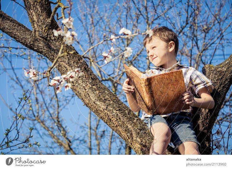 Ein kleiner Junge liest ein Buch auf einer Blüte Baum. Konzept Kinder und Wissenschaft. Lifestyle Freude Glück schön Freizeit & Hobby lesen Sommer Schule lernen