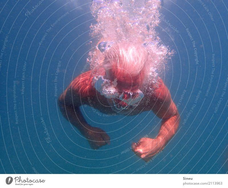 Der Mann aus dem Meer III Ferien & Urlaub & Reisen Sommerurlaub Wassersport tauchen Erwachsene Kopf 1 Mensch Urelemente Schönes Wetter grauhaarig Bewegung
