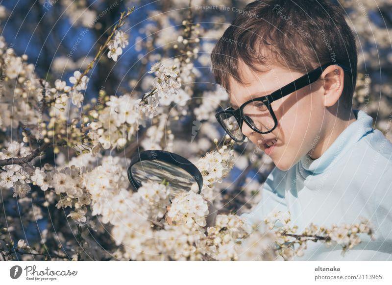 Erforschungsnatur des glücklichen kleinen Jungen mit Vergrößerungsglas Mensch Kind Natur Sommer Baum Blume Erholung Freude Gesicht Lifestyle Wiese