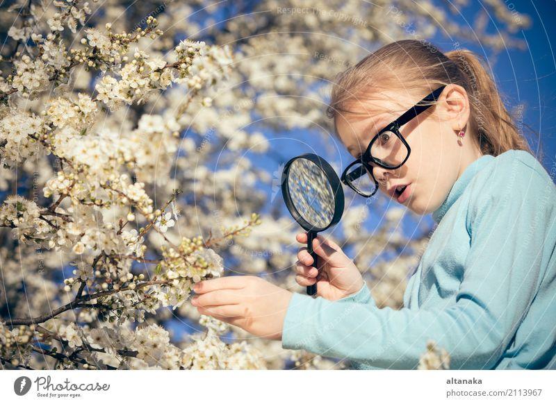 Glückliche erforschende Natur des kleinen Mädchens mit Lupe Mensch Kind Sommer Baum Blume Erholung Freude Gesicht Lifestyle Wiese Familie & Verwandtschaft