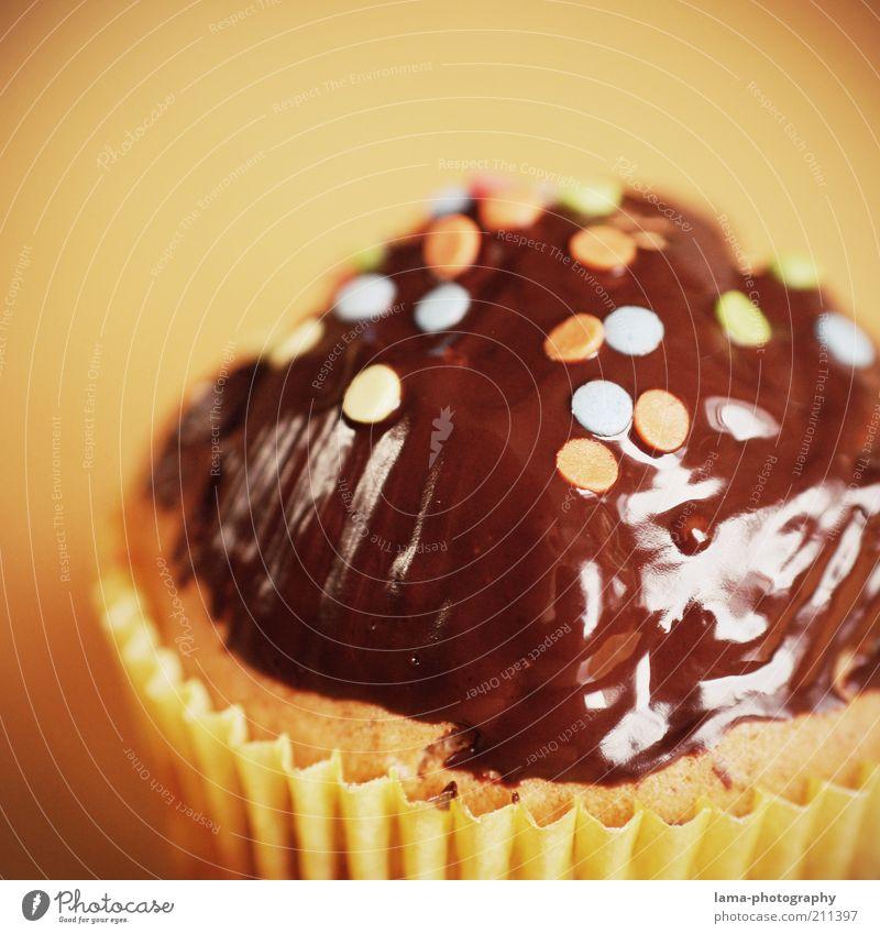 Geburtstags-Leckerei Teigwaren Backwaren Kuchen Schokolade Muffin braun Konfetti Dekoration & Verzierung Farbfoto Nahaufnahme Detailaufnahme Makroaufnahme