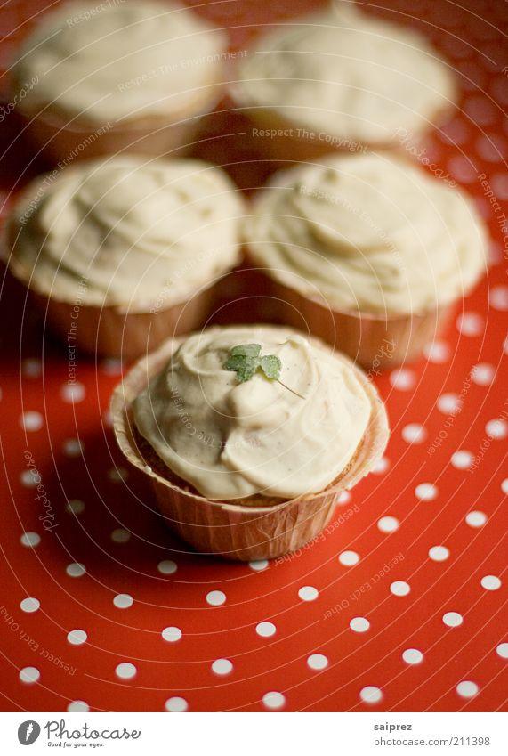 Cupcakes weiß rot Ernährung Lebensmittel süß Kuchen lecker genießen Backwaren Teigwaren gepunktet Speise Mahlzeit Slowfood Kaffeetrinken