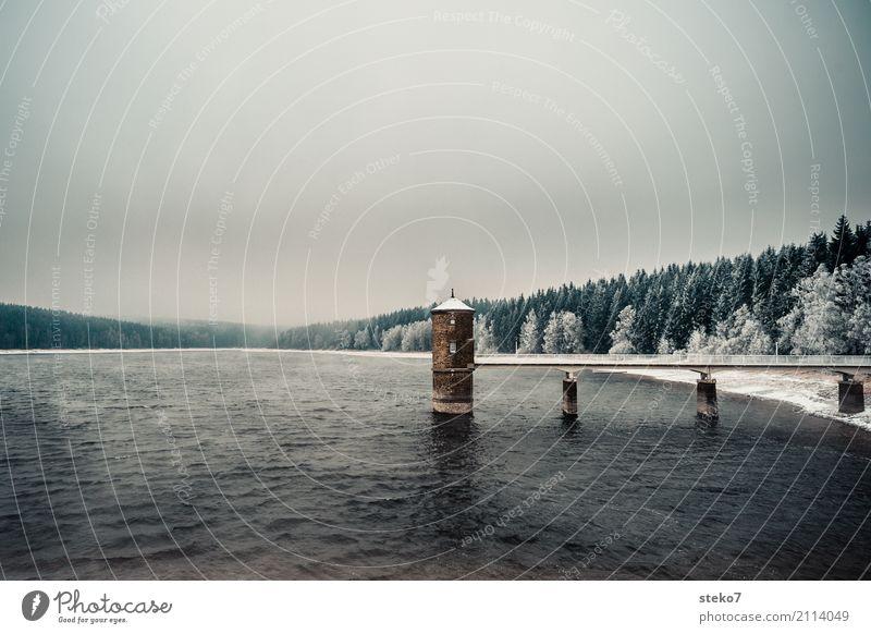 Abkühlung Wasser Winter Wind Eis Frost Wald Brücke Turm Talsperre kalt Einsamkeit Schutz Zufluchtsort Gedeckte Farben Menschenleer Textfreiraum oben