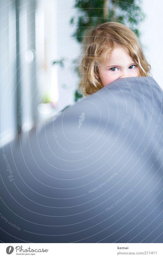 Skeptisch Mensch Kind Mädchen Gesicht Auge Haare & Frisuren Kopf klein Kindheit blond Häusliches Leben niedlich Neugier beobachten Sofa Kleinkind