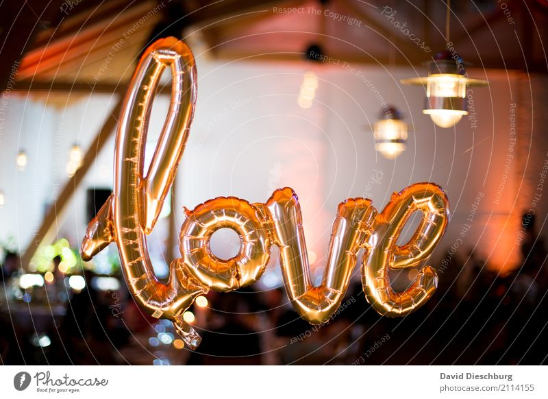 Love Party Veranstaltung Schriftzeichen Glück Frühlingsgefühle Verliebtheit Treue Romantik Partnerschaft Liebe Luftballon gold glänzend Hochzeit