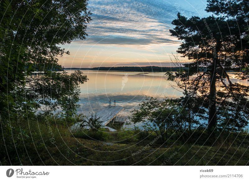 Schärengarten an der schwedischen Küste vor Stockholm Erholung Ferien & Urlaub & Reisen Tourismus Insel Natur Landschaft Wolken Baum Wald Ostsee blau grün