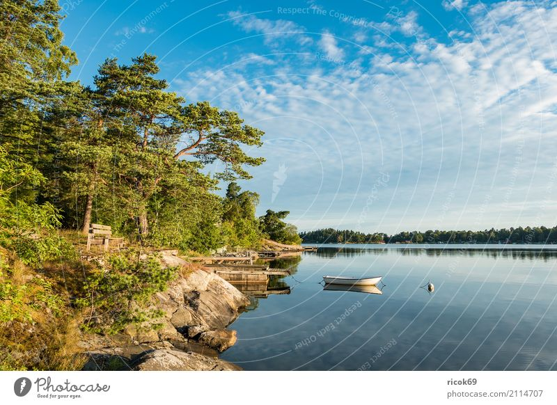 Schärengarten an der schwedischen Küste vor Stockholm Natur Ferien & Urlaub & Reisen blau grün Baum Landschaft Erholung Wolken Wald Umwelt Tourismus