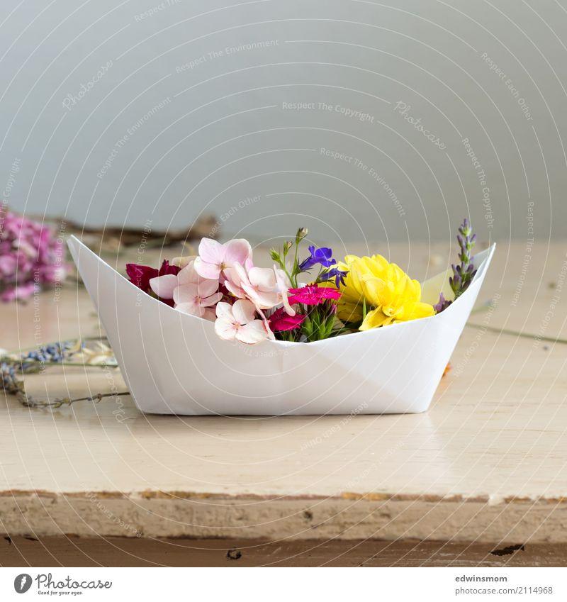 Summer feeling Freizeit & Hobby Basteln Sommer Dekoration & Verzierung Tisch Pflanze Blume Blüte Dahlien Hortensie Papier Holz Blühend Duft leuchten stehen