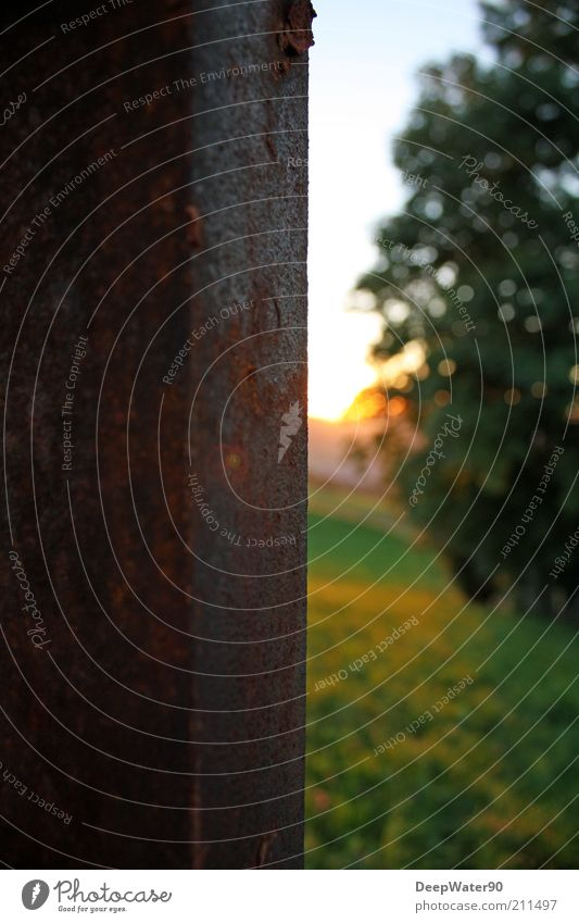 Iron environment Umwelt Natur Sonnenaufgang Sonnenuntergang Sommer Schönes Wetter Baum Gras Rost authentisch braun grün Gegenteil Bildaufbau Verfall Stahlträger