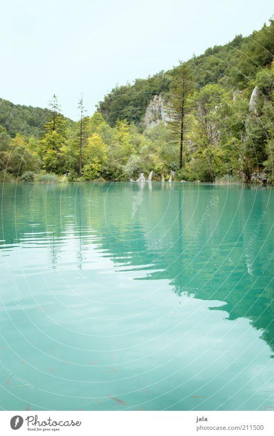 natur. Freiheit Natur Landschaft Wasser Himmel Pflanze Baum Grünpflanze Wald See Wasserfall Kroatien genießen ästhetisch außergewöhnlich natürlich blau grün