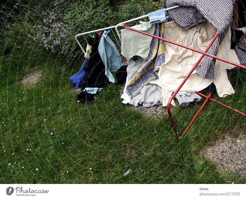 Wäsche legen Bekleidung liegen trocknen umgefallen Kleidungsstücke Waschtag Textilien aufhängen rein Reinigen mehrfarbig Außenaufnahme Wäscheständer Rasen