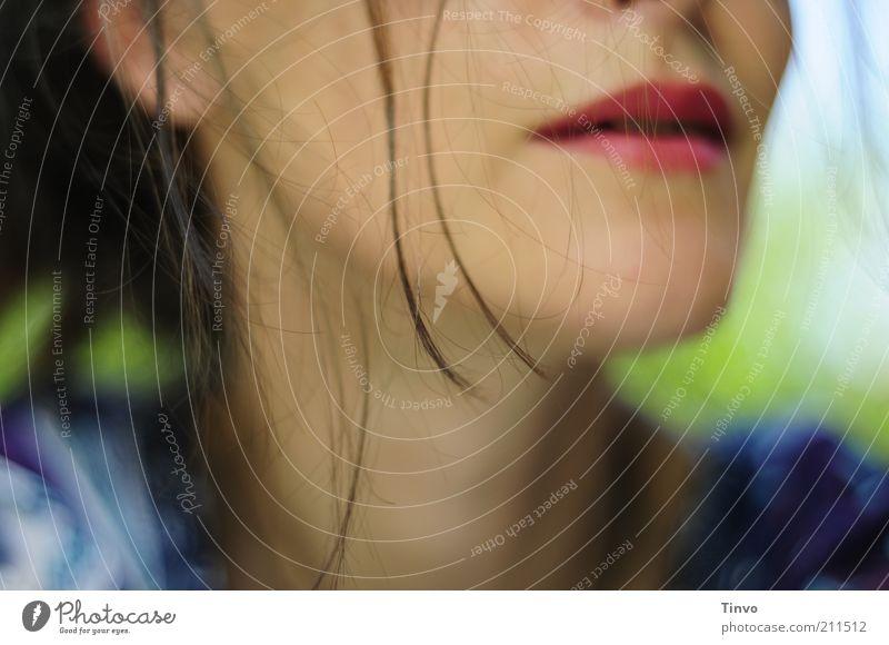 Rapunzel - so wird das nix! feminin Frau Erwachsene Haare & Frisuren Mund Lippen 1 Mensch brünett schön Zufriedenheit Lebensfreude Haarsträhne Farbfoto