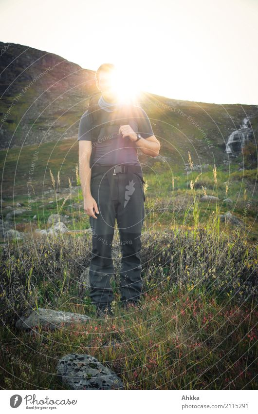 Sonnengott Ferien & Urlaub & Reisen Abenteuer Ferne Berge u. Gebirge wandern Junger Mann Jugendliche Natur Gras Berghang Lappland Erholung leuchten Stimmung