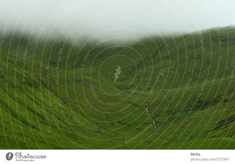 Green and Grey III Natur grün Ferien & Urlaub & Reisen ruhig Einsamkeit Berge u. Gebirge grau Landschaft Stimmung Nebel Wetter Umwelt Erde Ausflug Klima