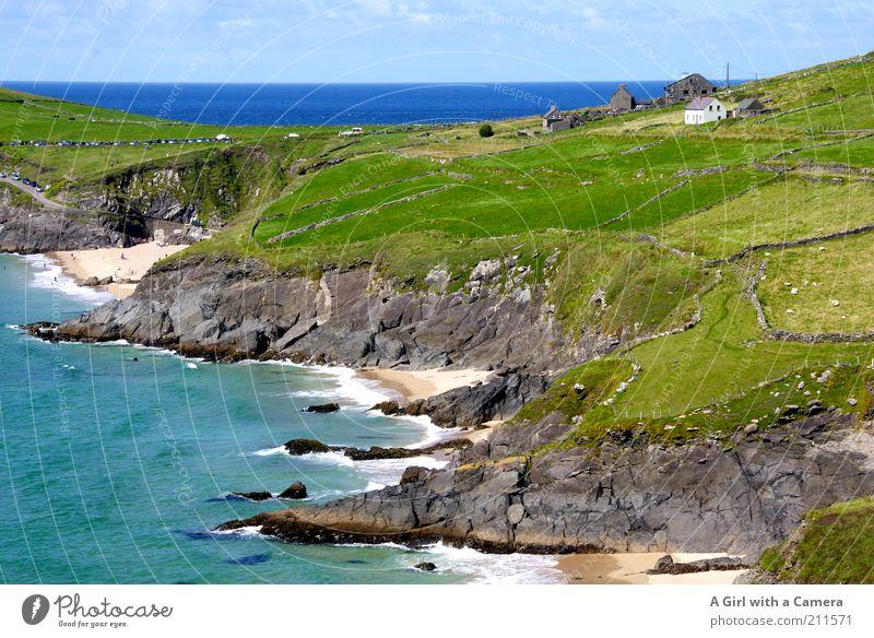 Irland ist so schön ..... Natur Meer grün blau Sommer Strand Gras Landschaft Stimmung Küste Wellen Horizont frisch Tourismus Aussicht