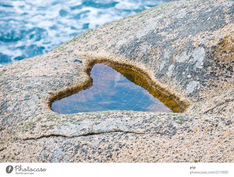 meer liebe Natur Wasser Sommer Küste Bucht Souvenir Herz Stein nass Liebe herzform Pfütze Wasserspiegelung Liebeskummer natürlich Erosion Felsen Wellen Furche