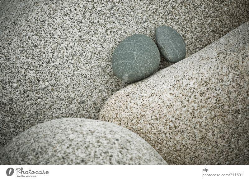 stein auf stein Natur Urelemente Felsen Stein grau Zusammenhalt Zusammensein beieinander 2 klein rund Granit Felsspalten Geröll paarweise fest Erosion Farbfoto