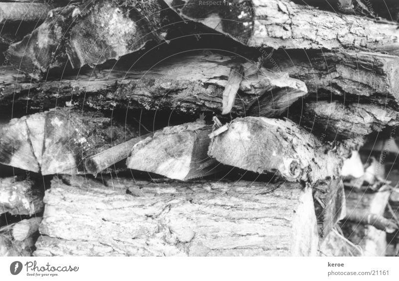 Holzscheite Baumrinde