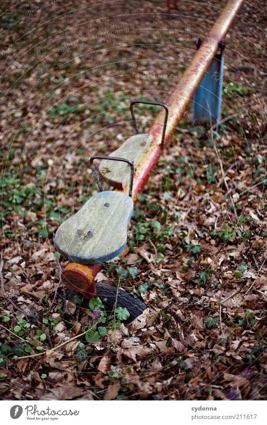 Vergessene Kindheit Natur alt Pflanze ruhig Einsamkeit Leben Herbst Spielen Umwelt Traurigkeit träumen Kindheit Zeit Kindheitserinnerung Vergänglichkeit geheimnisvoll