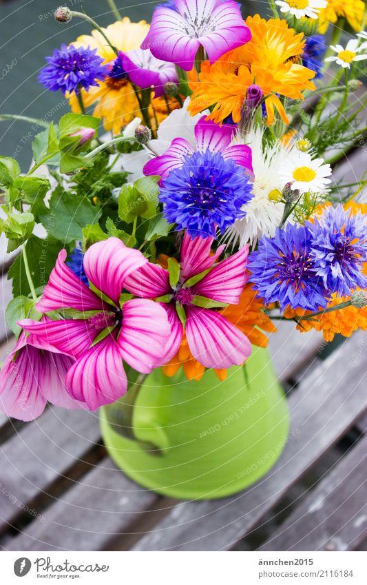 Blumen frisch vom Feld Sommer Frühling mehrfarbig Blumenstrauß gelb grün blau orange weiß Kornblume Ringelblume rosa