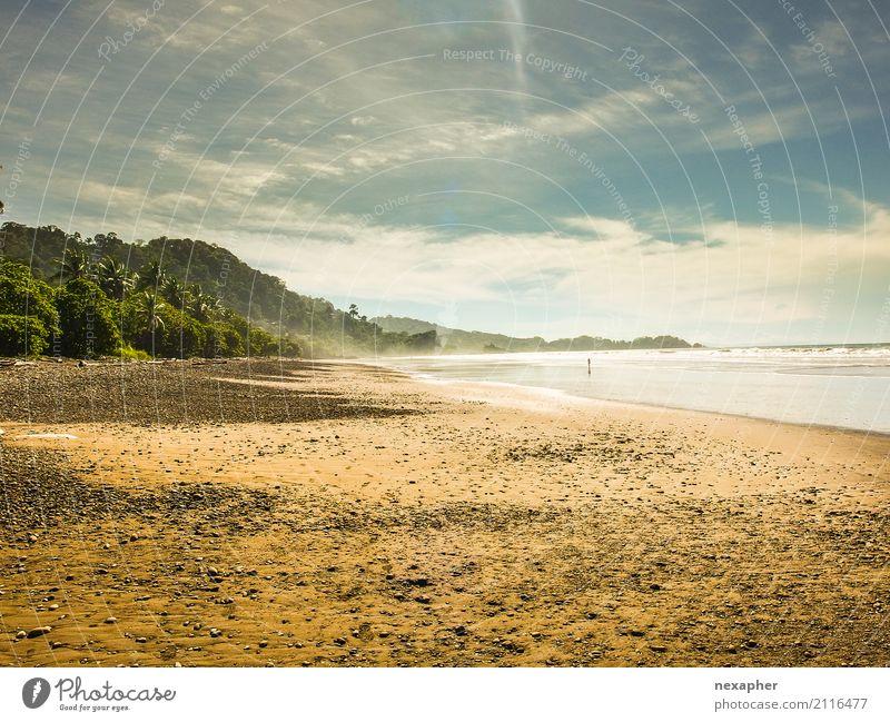 Tropischer Strand mit warmen Sonnenlicht Natur Ferien & Urlaub & Reisen Sommer schön grün Wasser Landschaft Erholung Ferne Wärme Umwelt gelb Frühling Glück