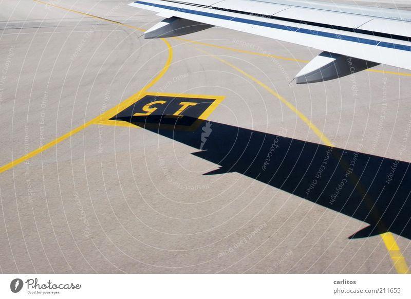 Bitte bleiben Sie noch angeschnallt sitzen, bis .... Ferien & Urlaub & Reisen gelb Freiheit grau Linie Flugzeug Schilder & Markierungen Luftverkehr Tourismus