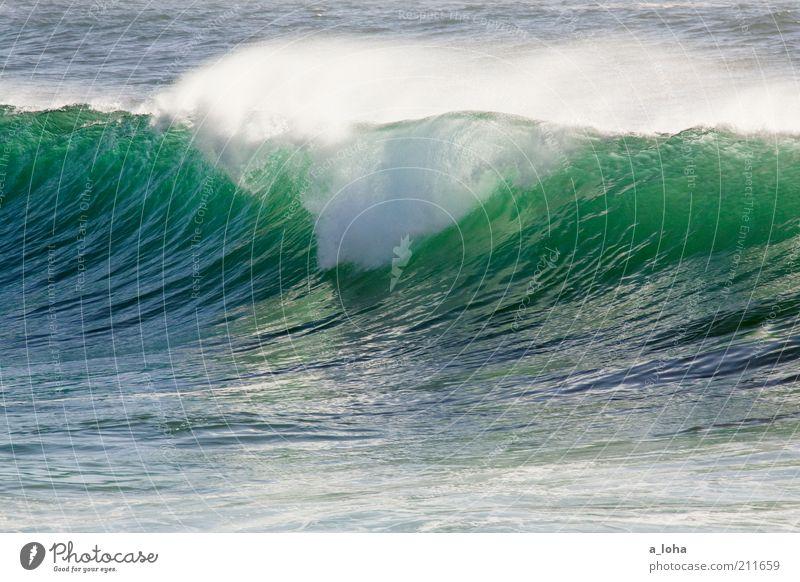leave the ocean as you found it Meer Wasser Klima Schönes Wetter Wellen Bewegung glänzend hoch nass wild blau grün Kraft Natur rein Gischt Farbfoto