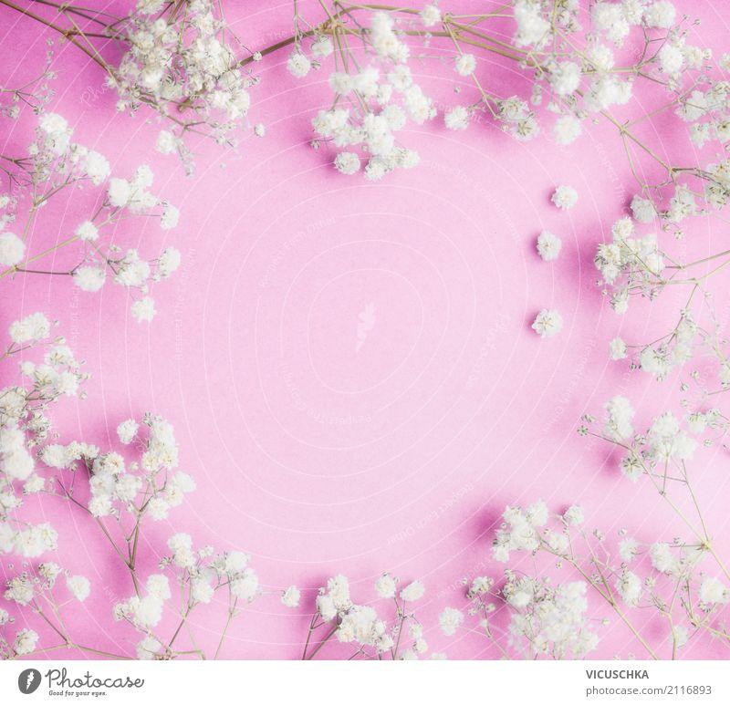Rose Blumen Rahmen mit Schleierkraut Stil Design Feste & Feiern Valentinstag Muttertag Hochzeit Geburtstag feminin Natur Pflanze Dekoration & Verzierung