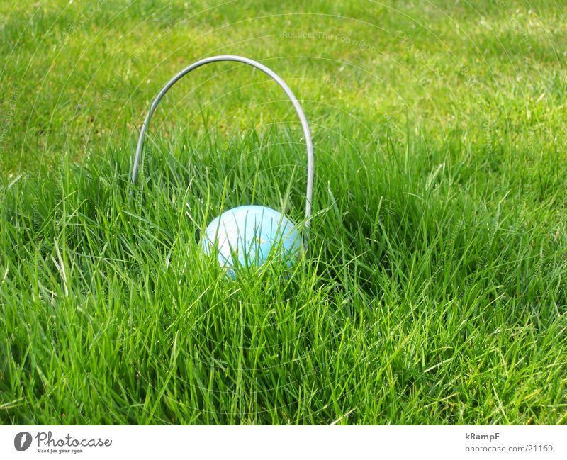 ab durchs Tor Freude Garten Rasen Freizeit & Hobby Croquet