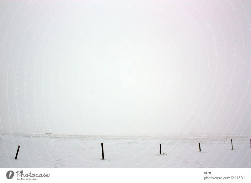 verGEISTlicht 3 Umwelt Natur Landschaft Urelemente Horizont Winter Klima Klimawandel Wetter Nebel Eis Frost Schnee Wiese Feld einfach weiß Gelassenheit ruhig