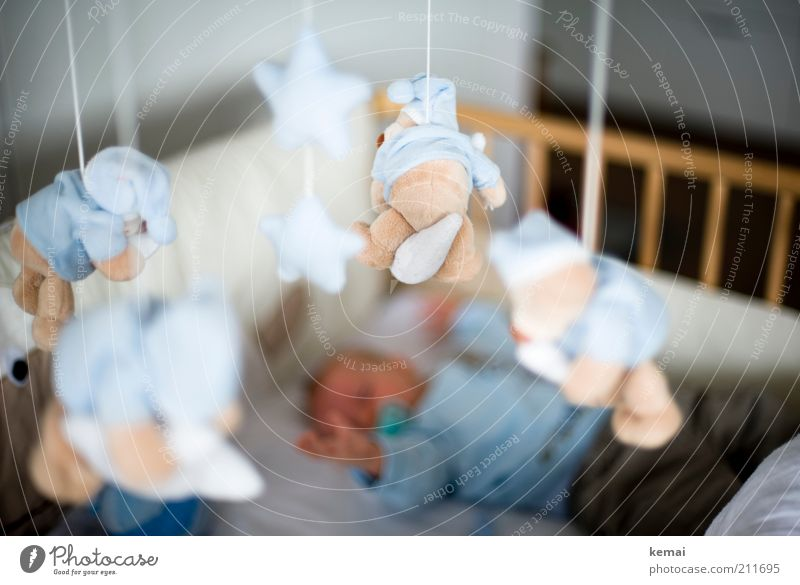 Greifen Mensch Kind Hand Erholung Spielen Junge klein Wohnung Kindheit Baby Arme liegen maskulin schlafen Häusliches Leben Dekoration & Verzierung