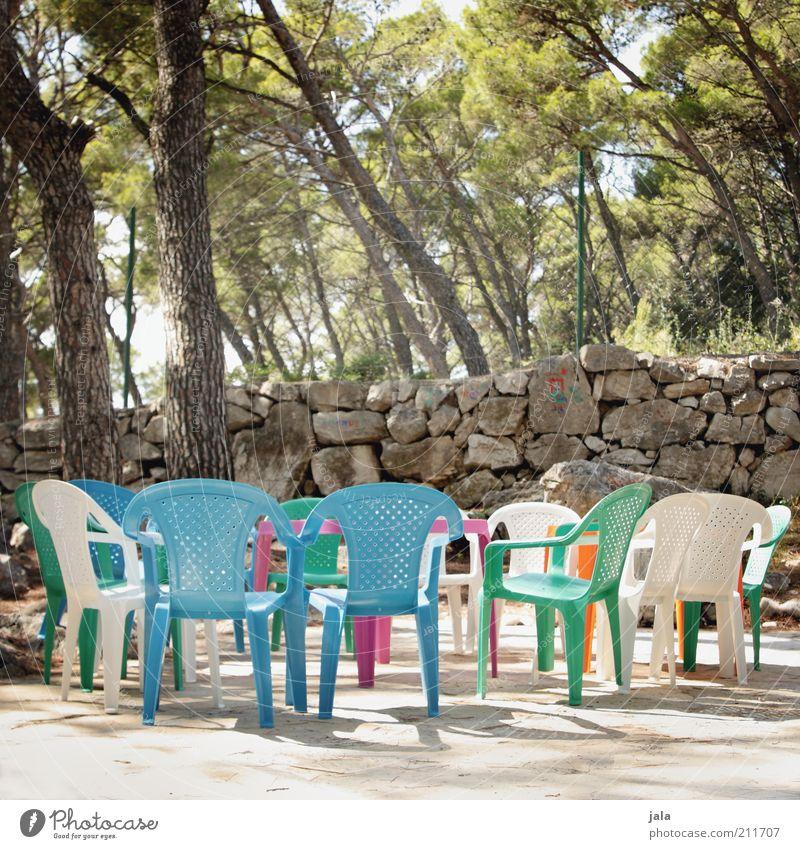 ihr kinderlein kommet, oh kommet doch all... Pflanze Baum Mauer Wand Stuhl mehrfarbig Farbfoto Außenaufnahme Menschenleer Tag Steinmauer Plastikstuhl