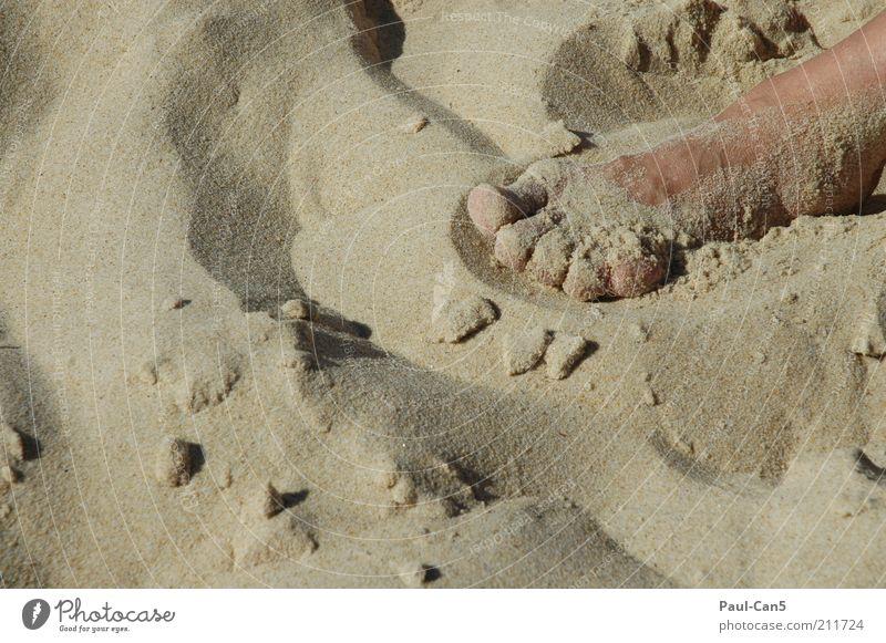 liegen bleiben Sommer Strand Ferien & Urlaub & Reisen ruhig Erholung Fuß Sand Zufriedenheit Haut liegen Zehen Barfuß Bildausschnitt