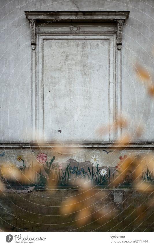 Da helfen auch keine Blumen ruhig Einsamkeit Leben Wand Fenster träumen Traurigkeit Mauer Architektur Zeit Fassade geschlossen leer Lifestyle ästhetisch