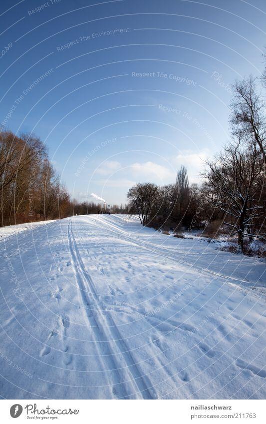 Winter Natur Himmel weiß Baum blau Winter kalt Wege & Pfade Landschaft braun Feld Wetter Umwelt Klima Hügel Schönes Wetter
