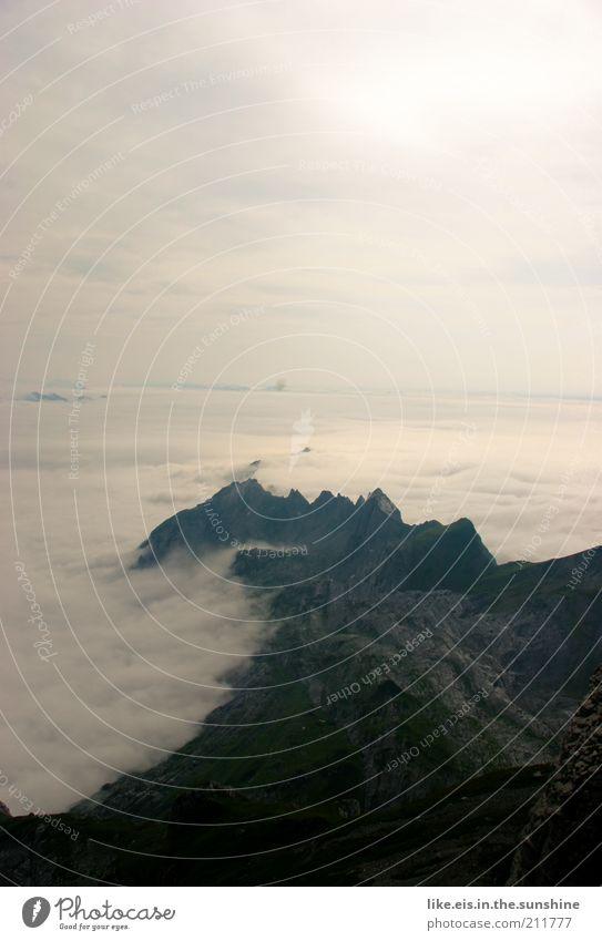 üüüüber den wolken... (II) ruhig Ausflug Ferne Freiheit Sommer Berge u. Gebirge Umwelt Natur Landschaft Wolken Sonnenlicht Schönes Wetter Nebel Felsen Alpen